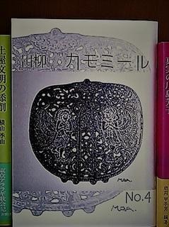 chamomile4.jpg